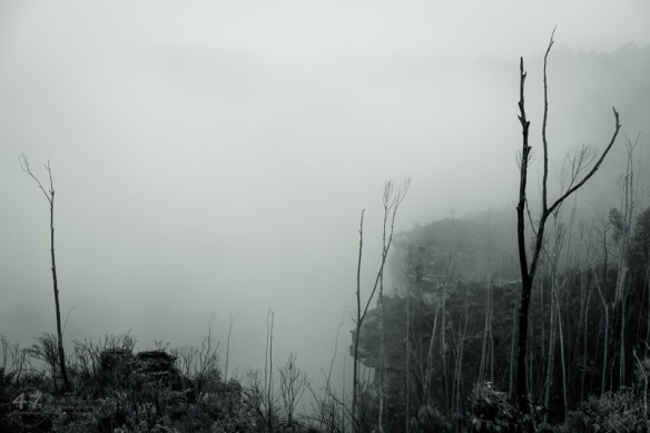 Mist beyond the cliffs