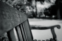 Bench for Saviours